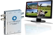 MATROX Micro Quad. Dispositivo multiventana Quad 3G/HD/SD/SDI a H